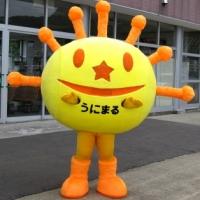 【ニッポンしまじま ゆるキャラ図鑑】 うにまる (奥尻島)