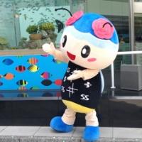 く~みん(久米島)- ニッポンしまじま ゆるキャラ図鑑