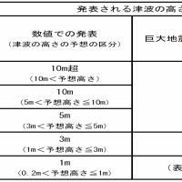 【宮城県津波対策ガイドライン】津波の避難場所について ~前編~