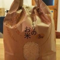 体験から学ぶ Part5 ~古代米を食べよう!~