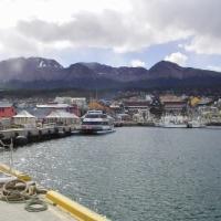 世界最南端の港町。南極に近づくと樹木は真横に生えるのです!?