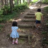 我が家のお気に入りの遊び場「掛川森林果樹公園」