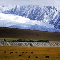 【妄想世界一周 Vol.4】世界一高い所を走る鉄道で天空の都へ