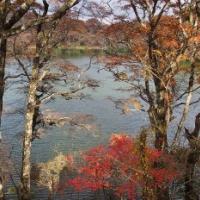 紅葉の八丁池へ行ってみた!