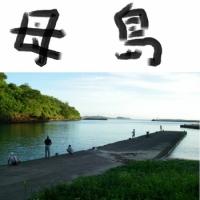 母島 - ははじま丸で東京南端へ!ハハジマメグロに会いに行こう(東京・小笠原諸島)