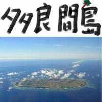 多良間島 - 見ごたえ抜群の名木とサンゴ礁、伝統の八月踊り(沖縄・宮古列島)