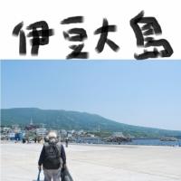 大島 - 火山と椿と動物と、地球の息吹に触れる島!(東京・伊豆諸島)