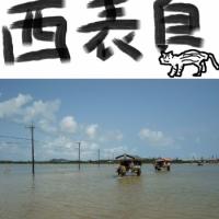 西表島 - 亜熱帯の大自然、イリオモテヤマネコの暮らす島(沖縄・八重山諸島)