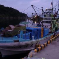 海の紳士 ~狐崎復興漁業部~
