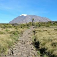 標高5,895m、アフリカ最高峰「キリマンジャロ」にアタック!