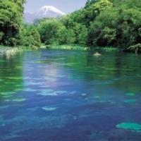 柿田川湧水公園 【ヒーリングスポット・静岡編】