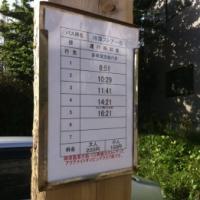 乗り遅れるとも~大変!一日5本の村営バス(神津島)【旅レポ】