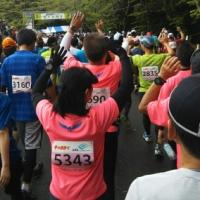 掛川・新茶マラソンから学んだこと