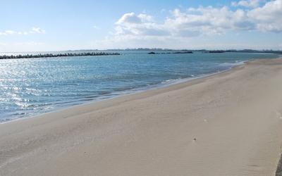 海辺の地をゆく 「石巻市・南浜」2012年11月21日