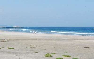 マンモス防潮堤が攻めて来ると… 海辺はたいへん!!