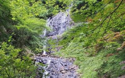 伊豆の隠れた名瀑・旭滝