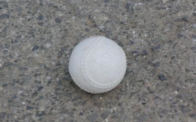 見つけたボール