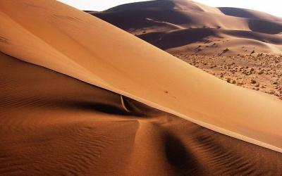 【妄想世界一周 Vol.12】アフリカで一番行きたい場所は、世界で最も美しい砂漠!