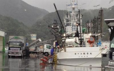 東日本大震災・復興支援リポート 「復興は進んでいるか?――女川」