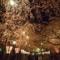 幽玄の美、三嶋大社夜桜