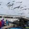 東日本大震災・復興支援リポート 「女川漁港の水揚げ風景」