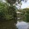 富士山の湧水をたたえて復活した楽寿園の小浜池