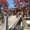 紅葉色づく伊豆の小京都・修善寺
