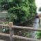 せせらぎの街・三島2016【御殿川・赤橋から通りへ】