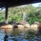 見わたす限りジャングル!西表島(いりおもてじま)に存在した日本最南端の温泉【湯めぐり島旅】