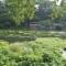 【三島探訪】街中にある富士の湧水地 ~柿田川湧水群~