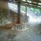 砂むし温泉!海中温泉!悪石島(あくせきじま)の天然のスーパー銭湯【湯めぐり島旅】