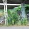 避難指示区域の治安を守る、ウルトラ警察隊