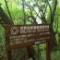 屋久島で山小屋に泊まる【旅レポ】