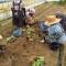 ロシナンテスの健康農業が未来を変える