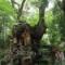 近所に日本で2番目の巨木があった! ~来宮神社の大クス~