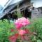 富岡町は花の町
