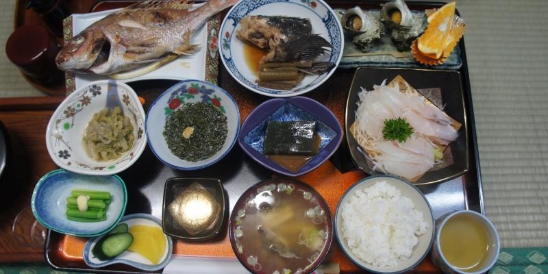 刺し網から出てくる魚たちにワクワク・・・!豊饒の海と粟島【旅レポ】