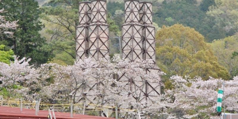 【2016年春のさくら】韮山反射炉に桜咲く