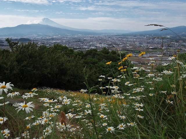 日守山公園からの眺め。人が少ない素晴らしい富士山ビュースポットです