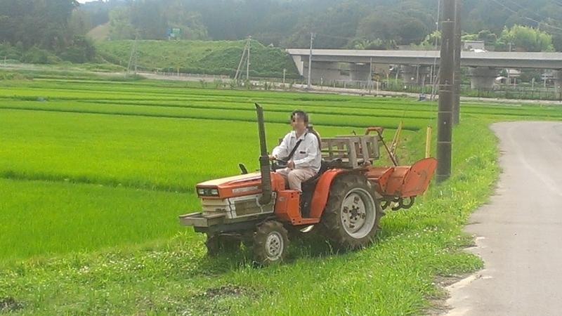 当時の実家でのサツマイモづくりの様子。トラクターで耕して・・・