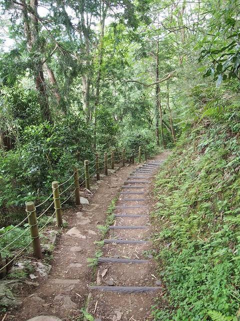 日守山公園へと続く山道。整備された歩きやすい道です