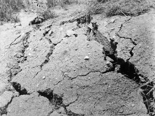 「旧熊本城平左衛門櫓床 第六師団号砲台裂地之景」 | 国立科学博物館地震資料室
