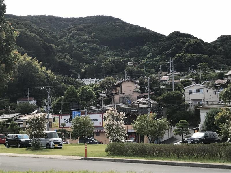 山の中腹あたりを伊豆急行が走っています。