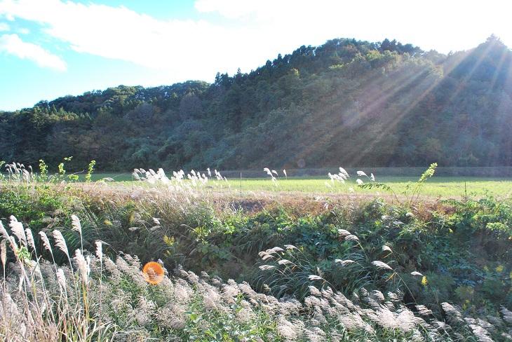 日本の田園風景の象徴のような小久地区