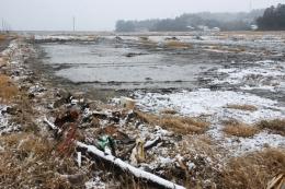 鹿島区に広がる津波をかぶった田んぼ
