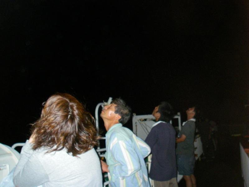 みんな夜空を見ていた!