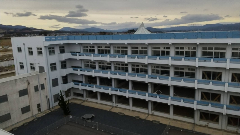 屋上からみた北校舎と今も生き続けるヒバの木が植えられた中庭