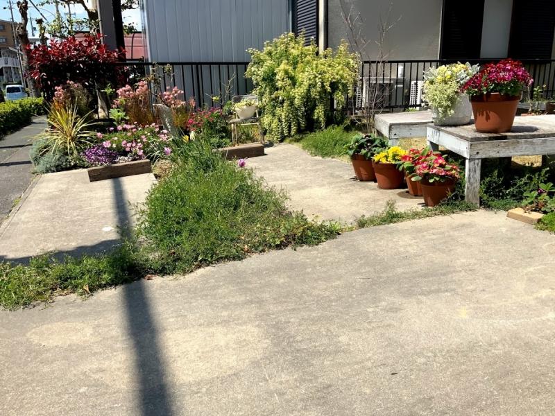 駐車場の真ん中が花壇になってます。