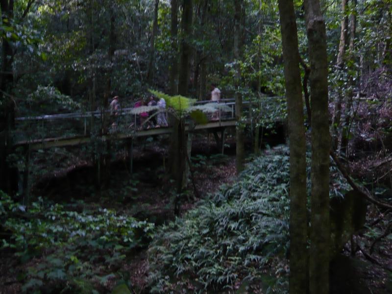 森の中を散策することもできます。またあのマイナスイオンたっぷりの空気の中を歩きたい・・・。