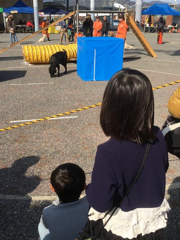 賢い救助犬の訓練の様子に、子ども達は興味津々